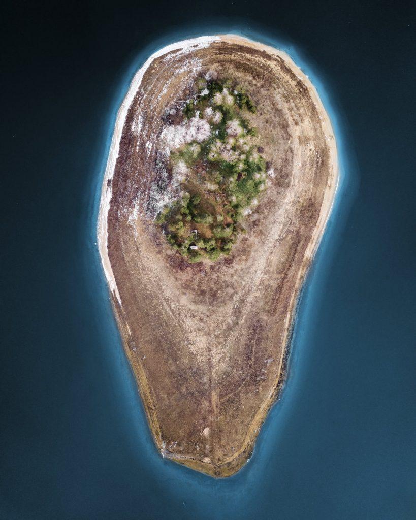 Островът авокадо